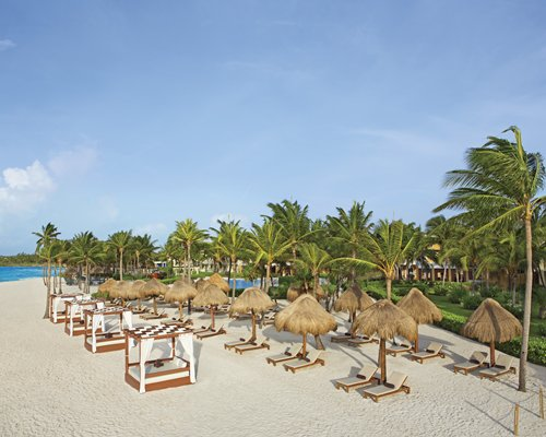 View of the beach with beach beds thatched sunshades chaise lounge chairs and palm trees.