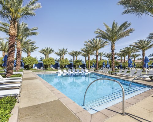 An outdoor swimming pool with chaise lounge chairs and palm trees.