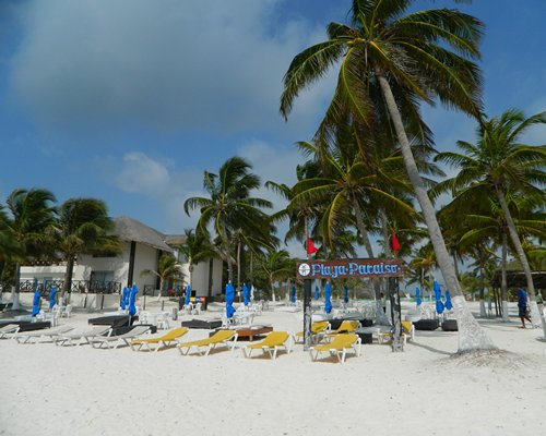 View of the beach with chaise lounge chairs and coconut trees alongside the Kore Tulum Retreat and Spa Resort.