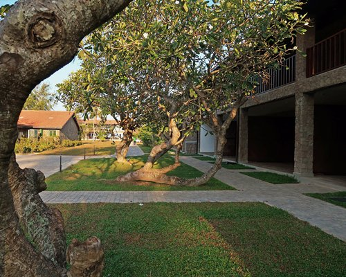 An exterior view of a resort unit alongside a well maintained lawn and trees.