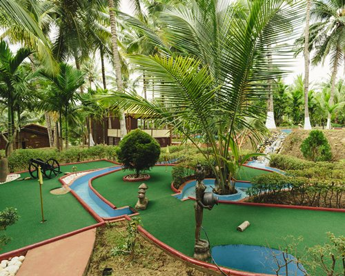 View of miniature golf surrounded by the coconut trees.