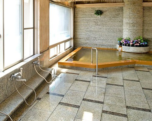 An indoor pool with potted plants.
