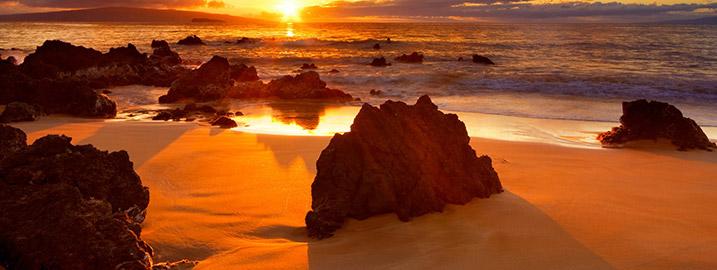 beaches_interest_trinav