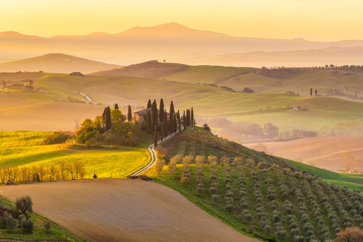 A Tale of Tuscany: Chianti