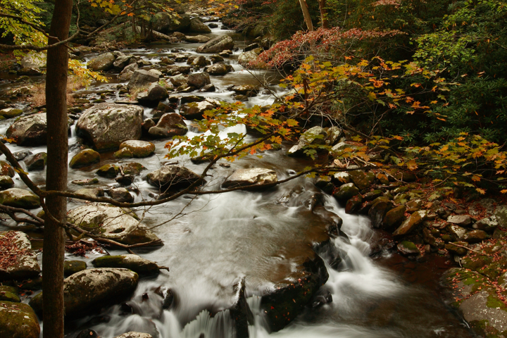 National Park Tips