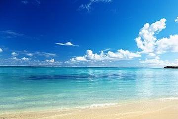 Unwind on Amelia Island