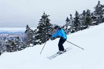 Live Free and Ski