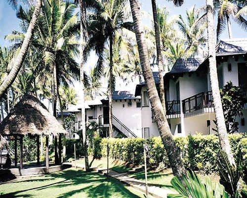 Fiji Palms #0676