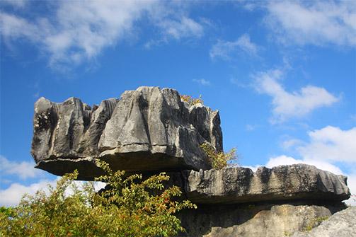 Waro Limestone Scenic Reserve